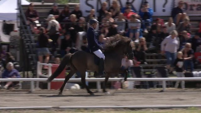 Sebastian Benje Holmström - Herakles ...