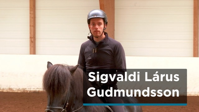 Sigvaldi Lárus Gudmundsson