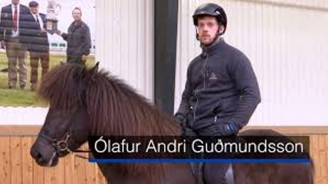 Ólafur Andri Guðmundsson, Fet