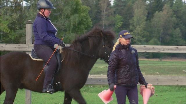 3 september -18: Att våga sätta igång sin häst efter skada