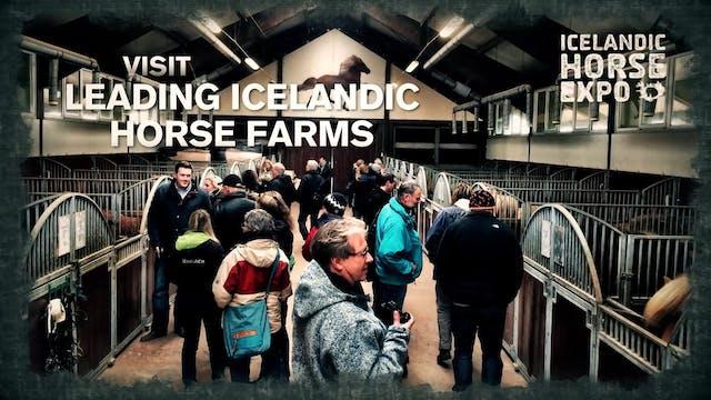 Icelandic Horse Expo