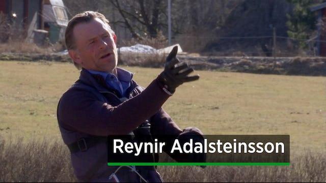 Reynir Adalsteinsson
