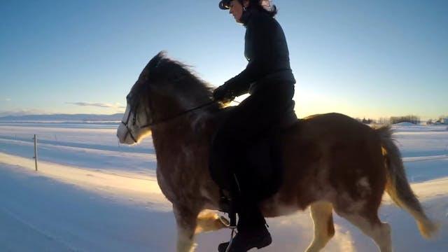 Rosa Birna riding the unique Ellert