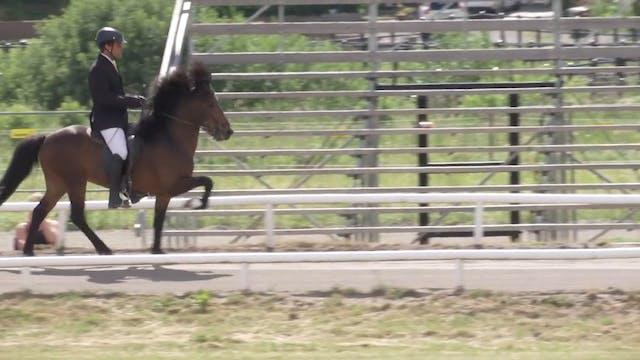 Ryttare och hästar i A-final T1 Töl...