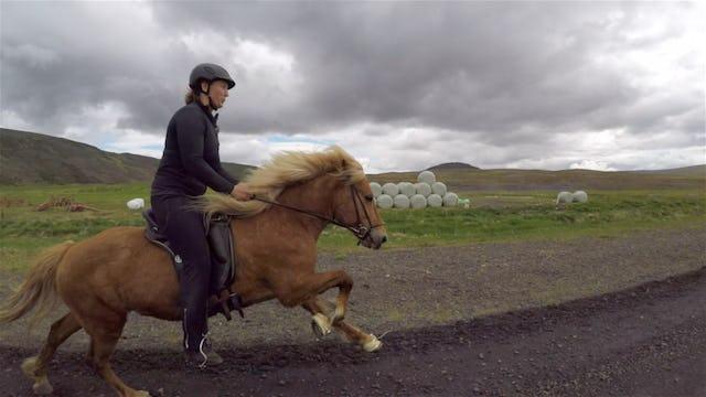 Denise driver hästgård på Island