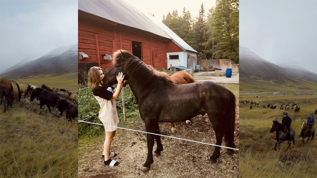 Mitt hästår - berättat av ryttare från hela landet