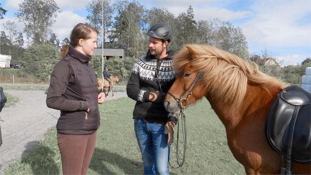 """16 okt -18: """"Nu går Frasse att rida som en vanlig häst."""""""