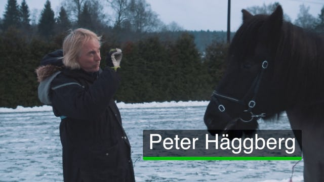 Peter Häggberg