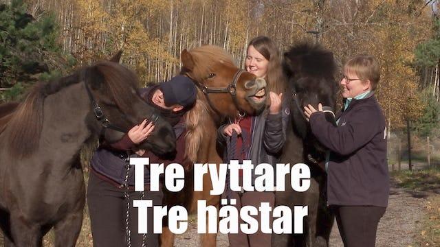 Tre ryttare, tre hästar