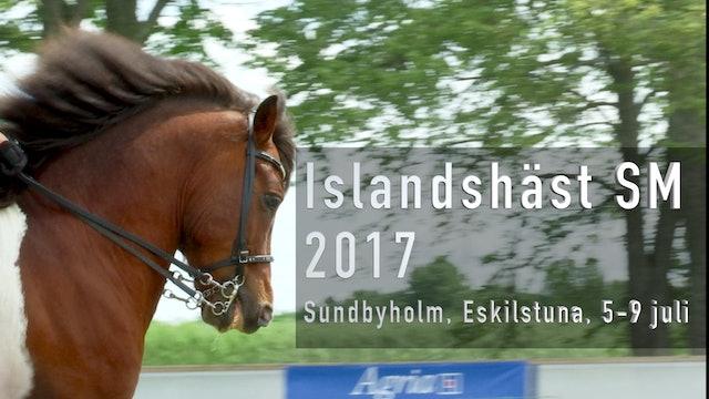 Islandshäst SM 2017