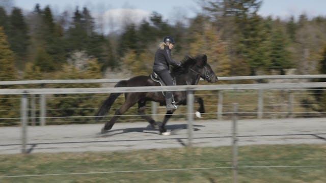 Ylva Hagander Úrval från Olsbacken