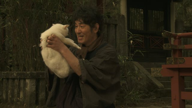 Samurai Cat: Tamanojo Goes Edo