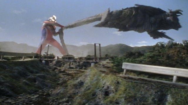 The Sky of Reunion