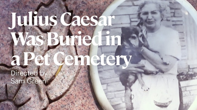 Julius Caesar Was Buried in a Pet Cemetery