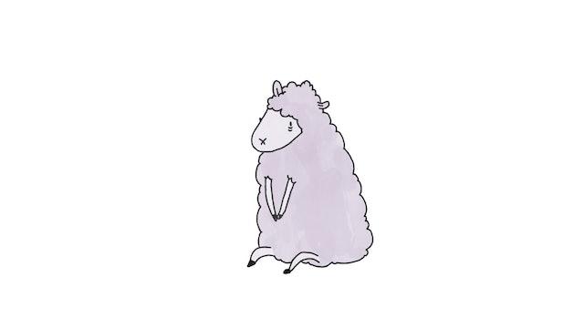Episode 1 - Sheep
