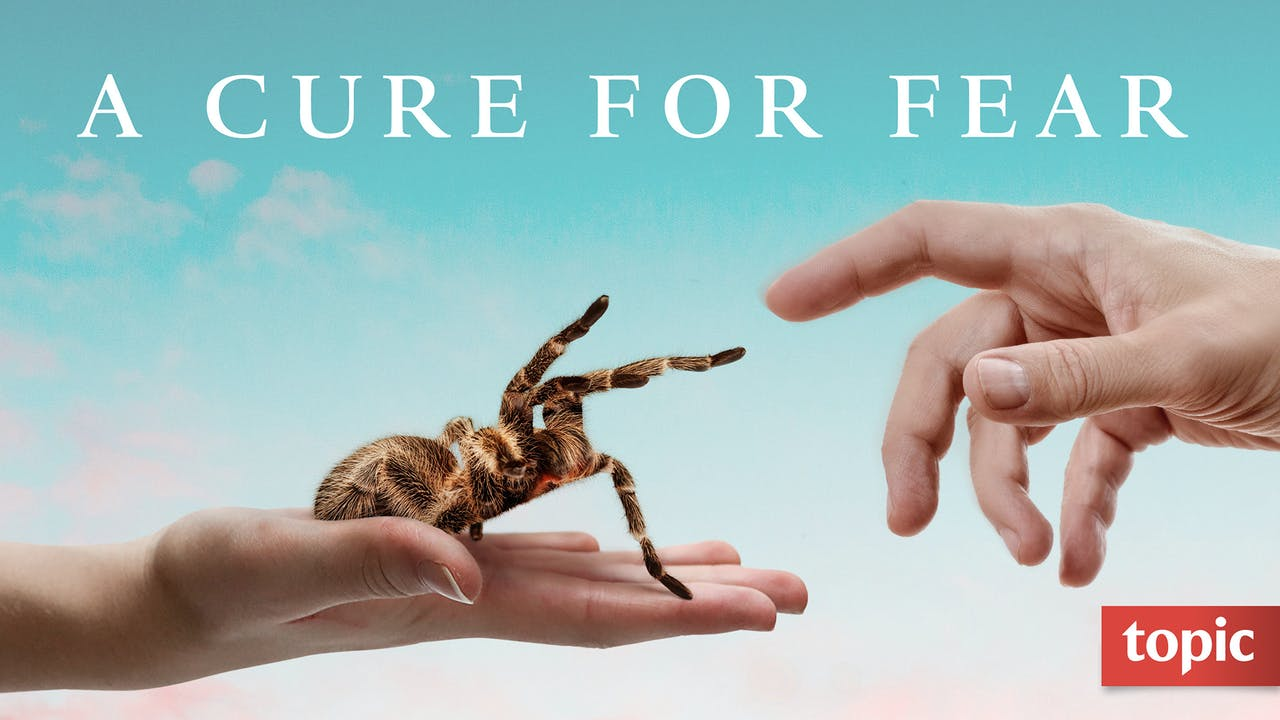 A Cure for Fear Season 1
