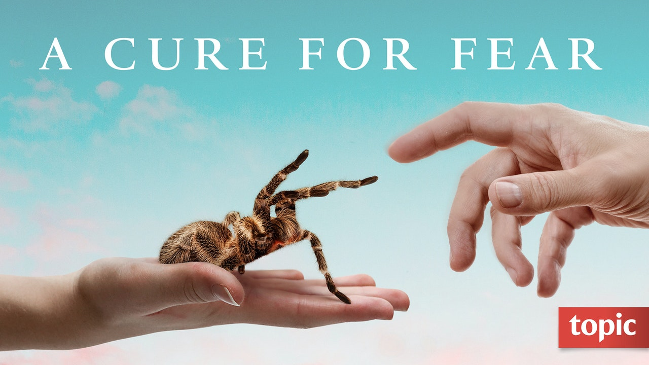 A Cure for Fear