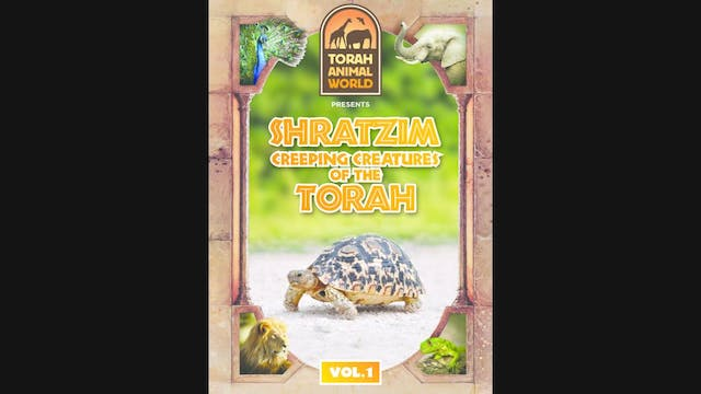 Shratzim Creeping Creatures of the Torah Vol. 1