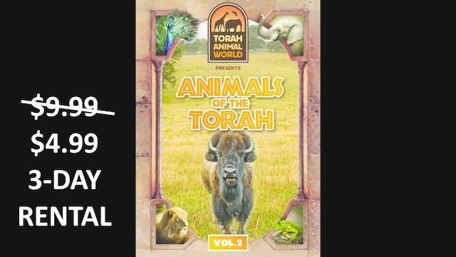 Animals Of The Torah Vol. 2