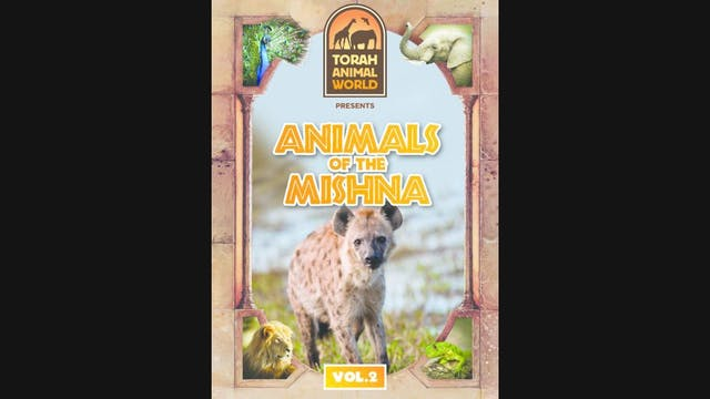 Animals of The Mishna Vol. 2