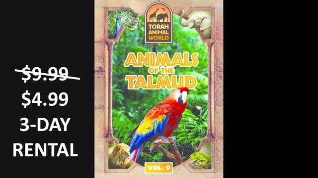Animals of the Talmud Vol. 9