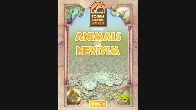Animals of Neviyim