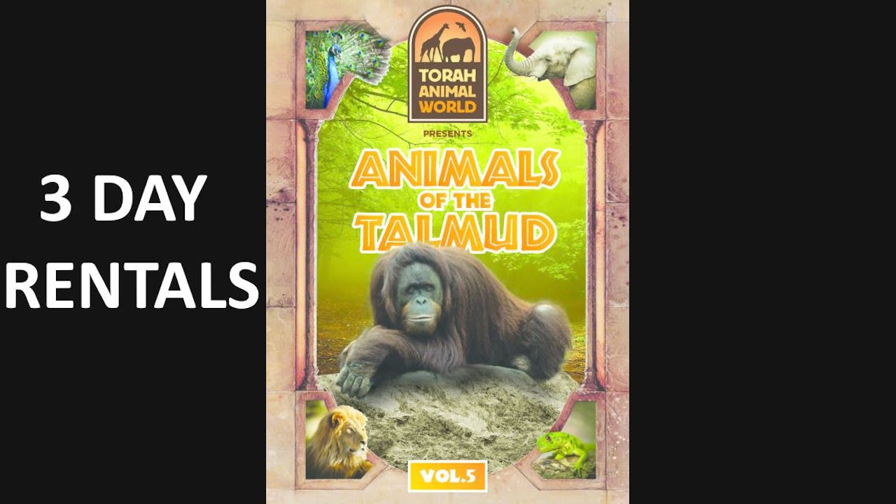 Animals of the Talmud Vol. 5