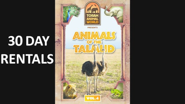 Animals of the Talmud Vol. 4