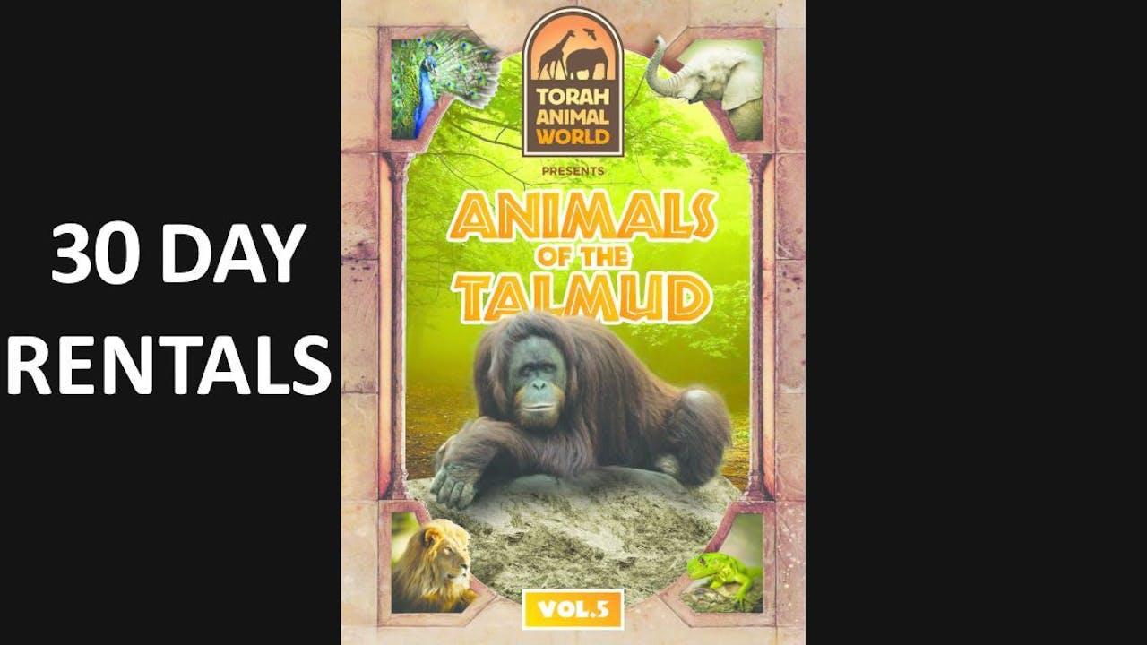 Animals of the Talmud Vol. 5
