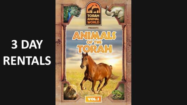 Animals of The Torah Vol. 3