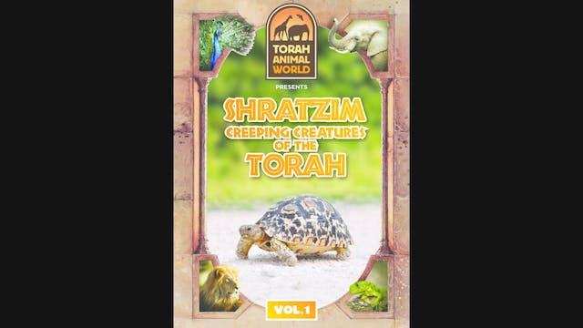 Shratzim Vol.1