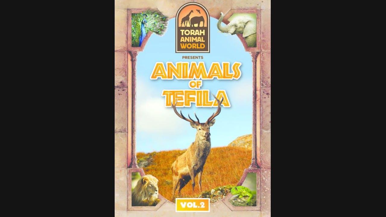 Animals of Tefila Vol. 2