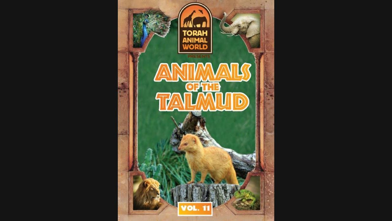 Animals of the Talmud Vol. 11