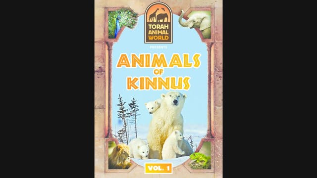 Animals of Kinnus