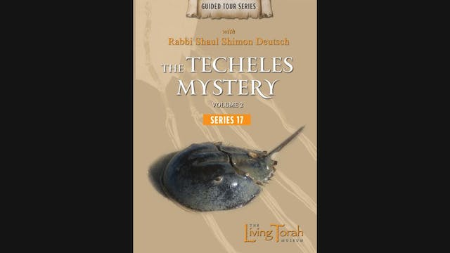 The Techeles Mystery Vol. 2