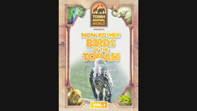 Non-Kosher Birds of The Torah Vol. 1
