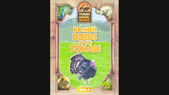 Kosher Birds of the Torah Vol. 2