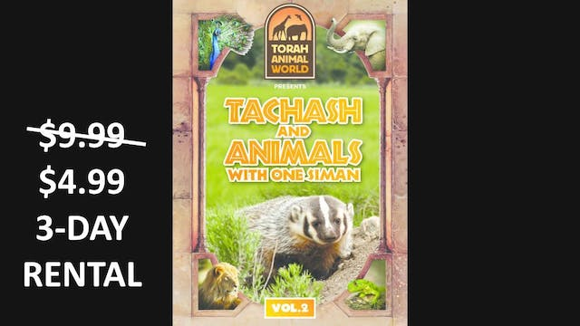 Tachash and Animals with one Siman Vol. 2