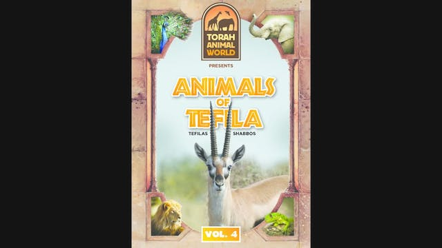 Animals of Tefila - Shabbos Vol-4