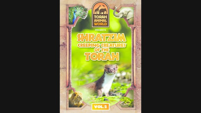 Shratzim Creeping Creatures of the Torah Vol. 2