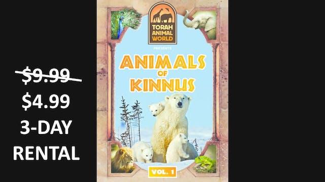 Animals of Kinnus