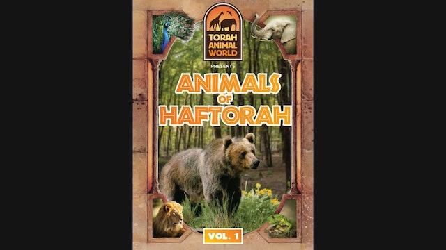 Animals of Haftorah