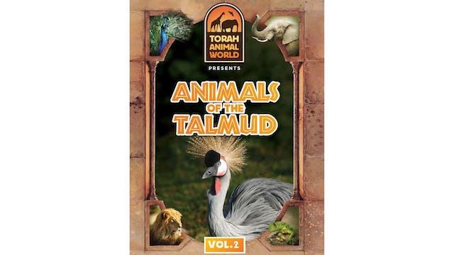Animals of the Talmud Vol. 2