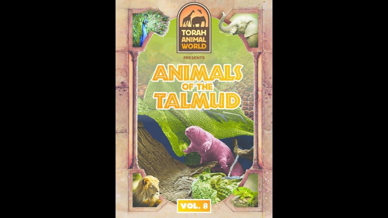 Animals of the Talmud Vol. 8