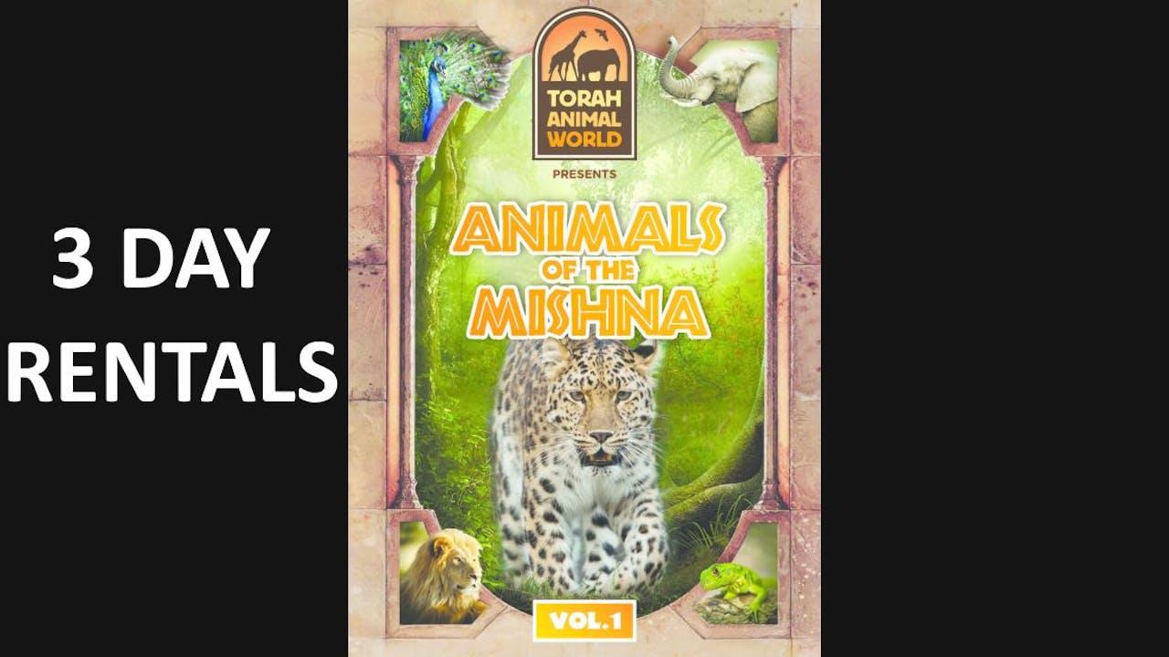 Animals of The Mishna Vol. 1
