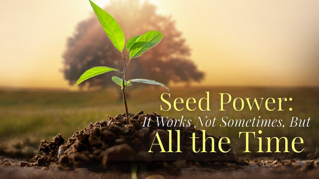 Seed Power: It Works Not Sometimes, But All the Time!
