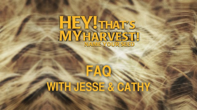 Hey! That's My Question with Jesse & ...