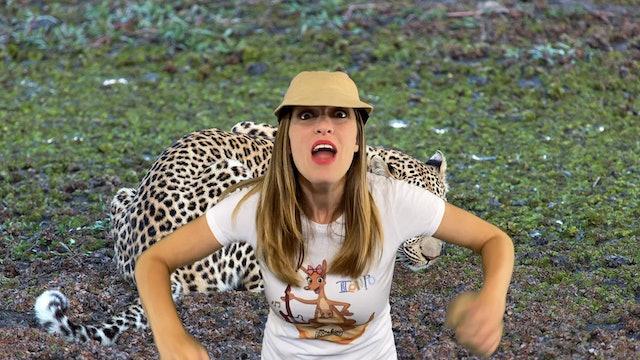 Going on Safari
