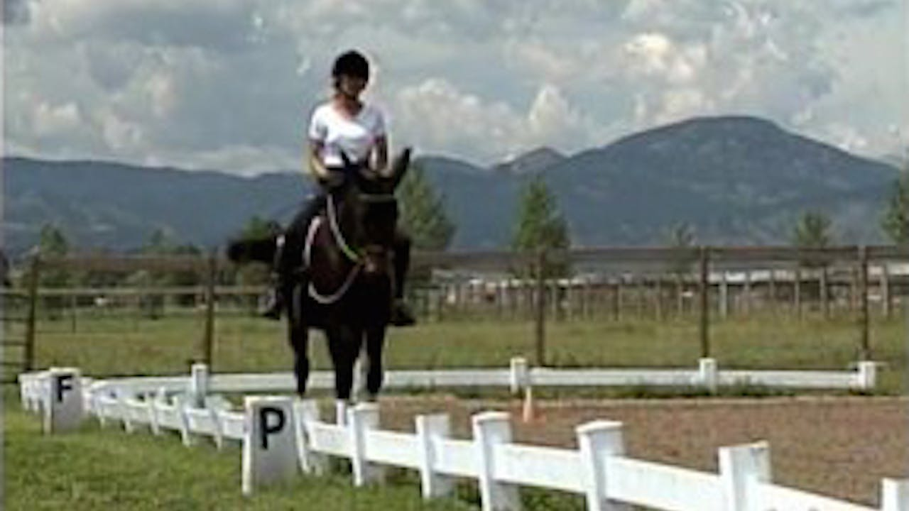 Episode 09 - Intermediate Saddle Training I