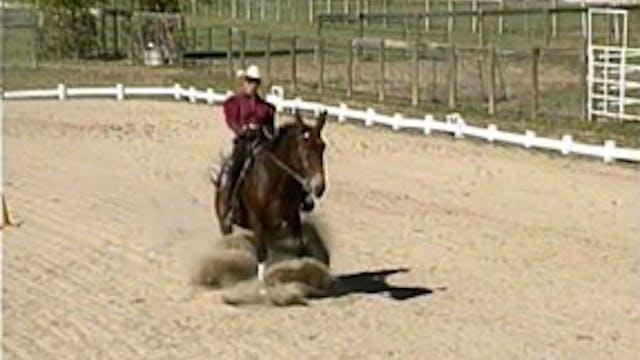 Episode 12 - Advanced Saddle Training II